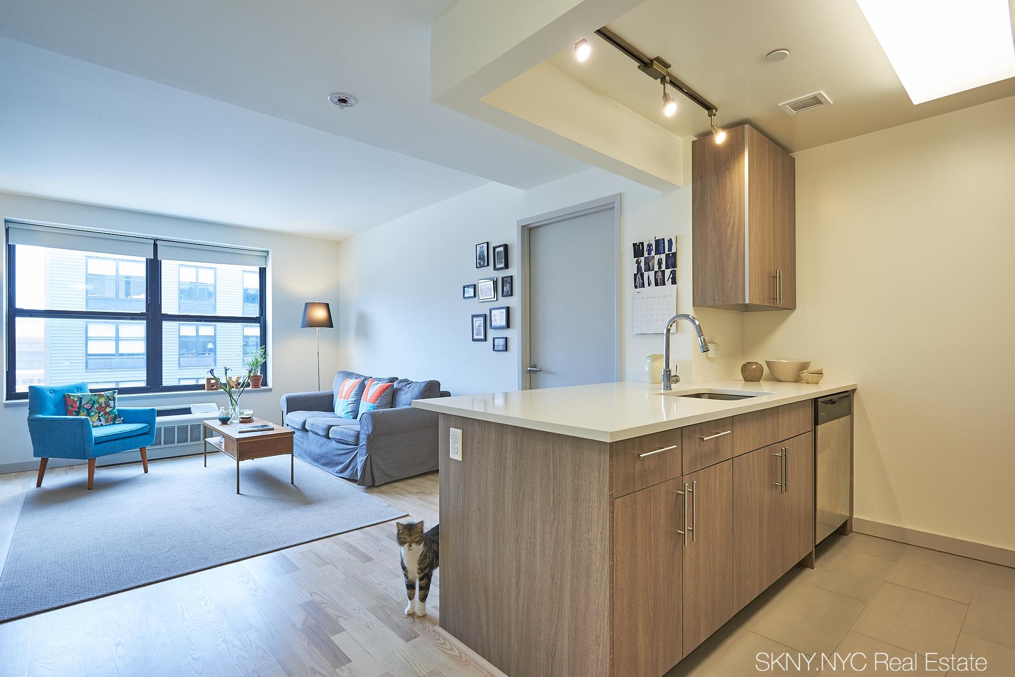 Brooklyn Modern (2B/2B @ $3,950/mo) NO FEE | NYC Real Estate Geek